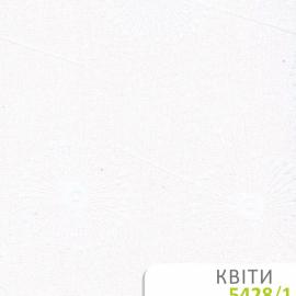 5428_11