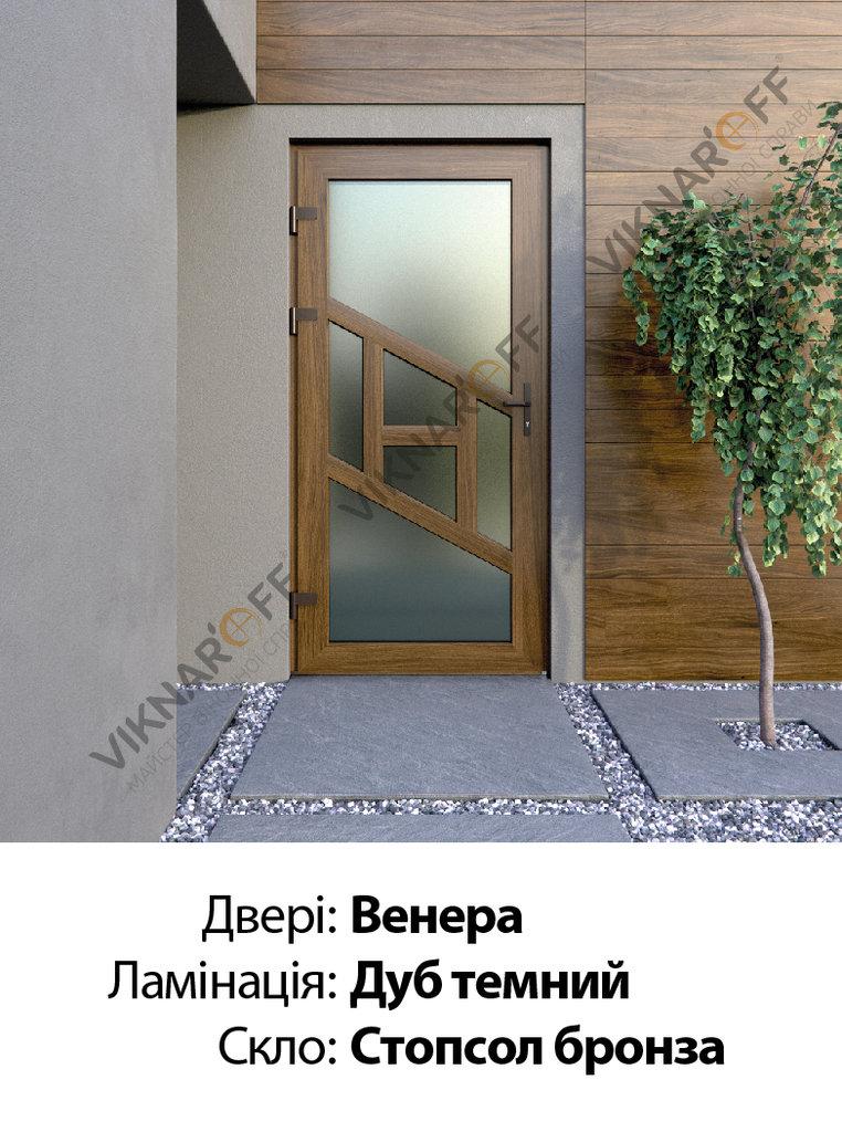 Двері-укр-03